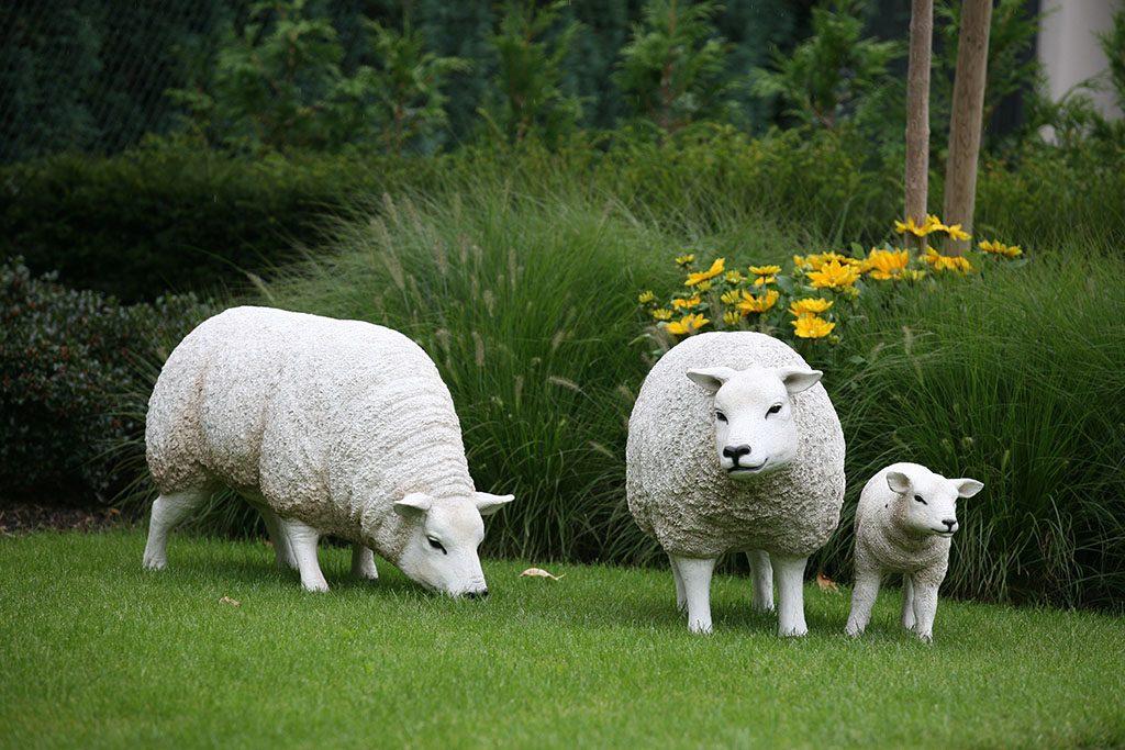 De vlotten schaapjes